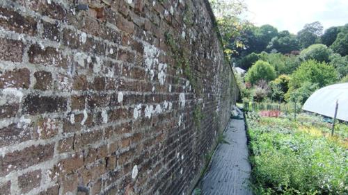 Endsleigh Gardens