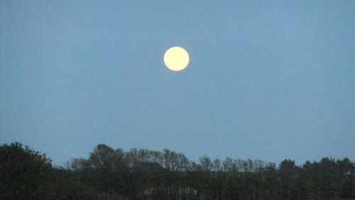 The May Moon