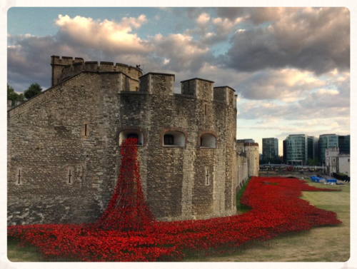 Poppies - Historic Royal Palaces