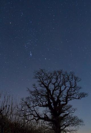 Stargazing (Tommy Hatwell)