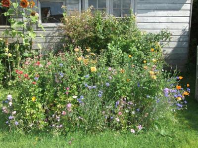 Flowerpatch