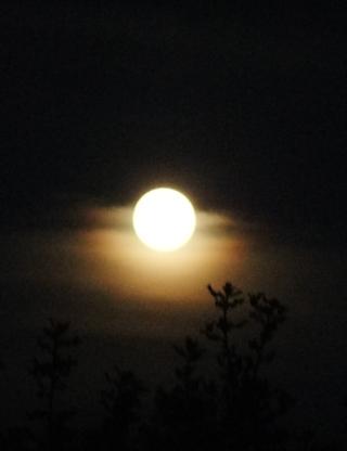 September 2015 Harvest Moon