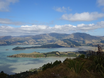 NZ 2016 Port Hills, Christchurch