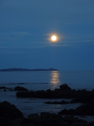 NZ 2016 Full moon at Kaikoura