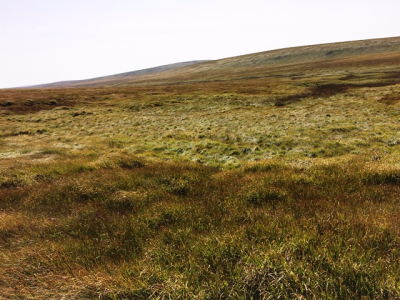 Walk to East Dart Head