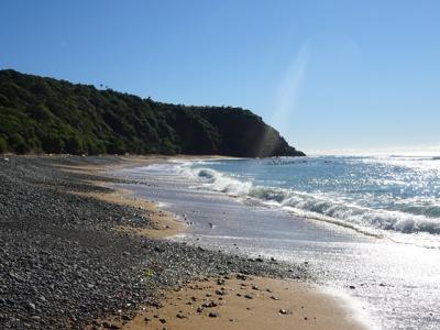 Bushey Beach, Oamaru