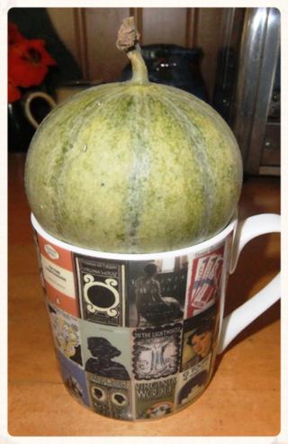 Sept 14 melon 2