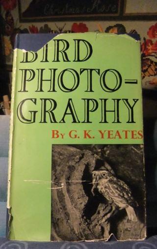 Bird Photography ~ G.K.Yeates