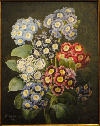 473px-A_Bouquet_of_Auriculas_by_Pierre_Joseph_Redoute,_dated_1837,_watercolor_on_vellum_-_National_Gallery_of_Art,_Washington_-_DSC09741
