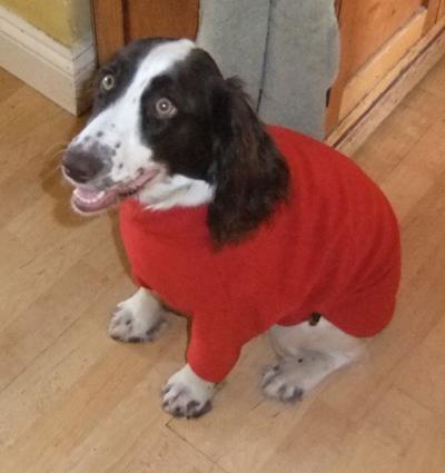 Nell's pyjamas