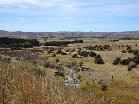 NZ 2016 OTAGO