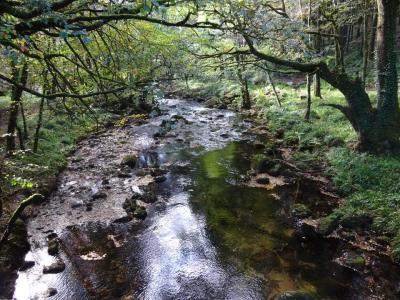 River Walkham