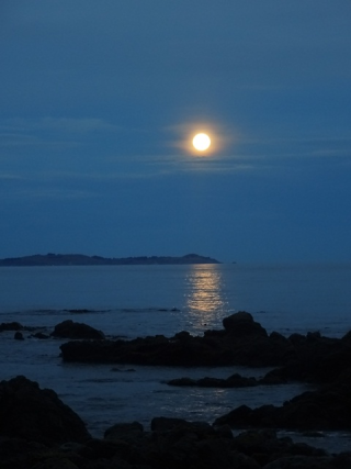 NZ 2016 KAIKOURA FULL MOON