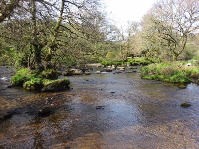 April 17 Dartmeet