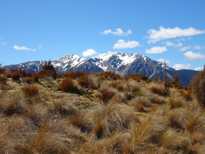 Bealey Spur Track, New Zealand