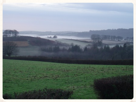 Tamar mist