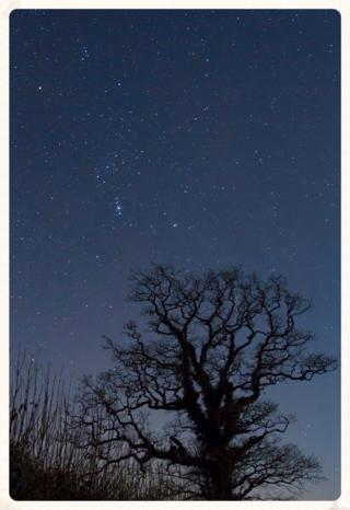 December night...  © Tommy Hatwell