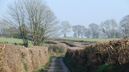 The lane in March