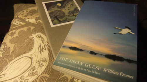 The Snow Geese ~ William Fiennes