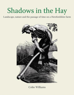 Shadows in the Hay ~ Colin Williams