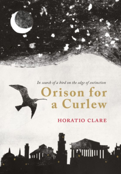 Orison for a Curlew ~ Horatio Clare