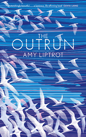 The Outrun ~ Amy Liptrot