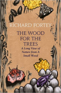 The Wood For the Trees