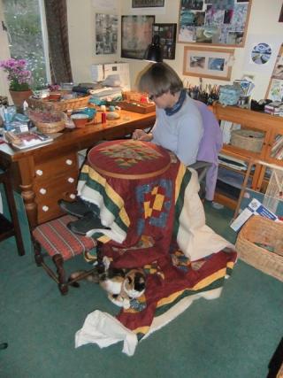 July 15 quilt + cat 3