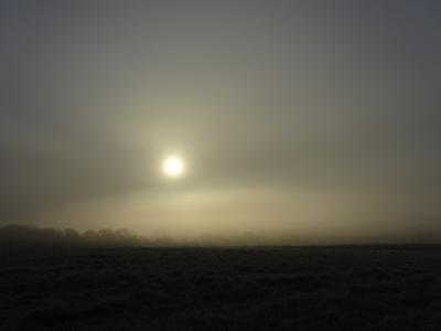 DEC 16 FROST SUN