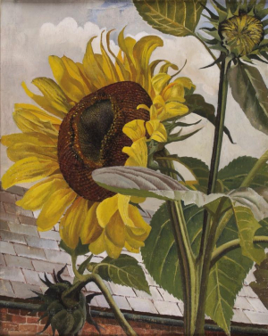 Sunflowers by Stanley Spencer