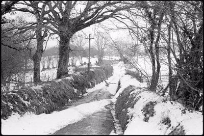 Snowy lane with Heron Details West Lane, Dolton, February 1978.  Photograph by James Ravilious © Beaford Arts