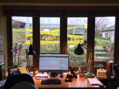 Feb 19 desk