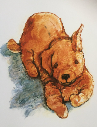 Dogger by Shirley Hughes