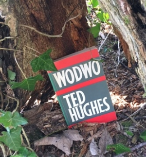 Wodwo ~ Ted Hughes