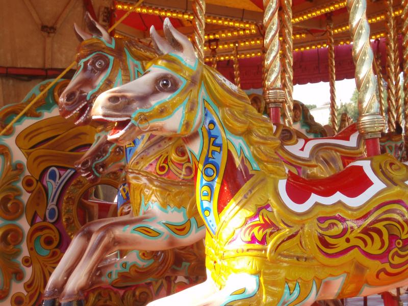Goose fair 09 011