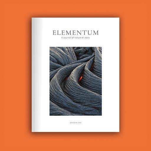 Elementum ed