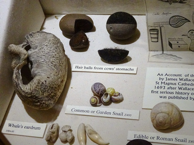 ORKNEY 16 STROMNESS MUSEUM 2