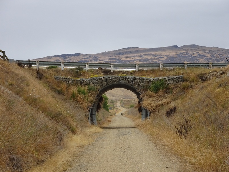 Nz 2016 rail trail 1