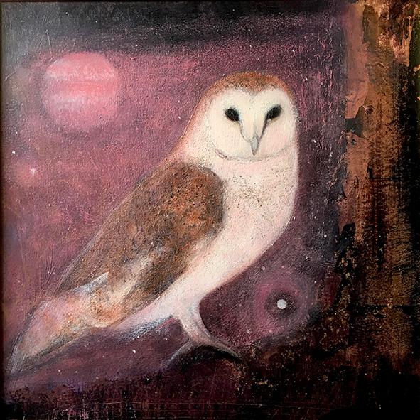 Barn owl ch