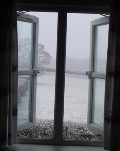 Window_snow