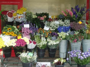 Market_day_flowers