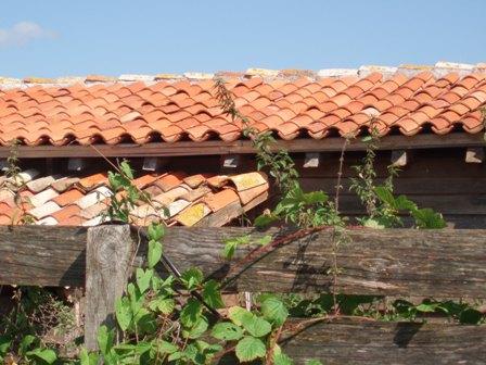 Www_leygonie_roof