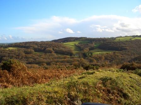 Dartmoor_3