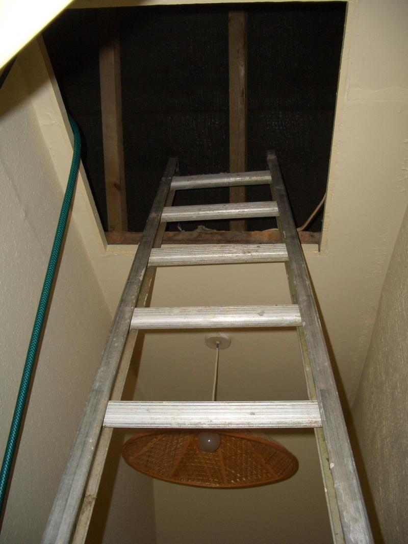 Plumbing_ladder